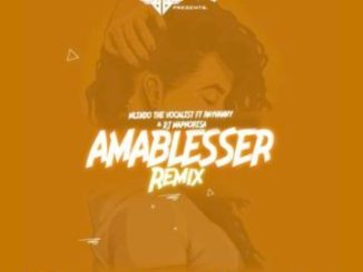Mlindo The Vocalist, Amablesser (Remix), Rayvanny, DJ Maphorisa, mp3, download, datafilehost, fakaza, Afro House 2018, Afro House Mix, Afro House Music, House Music