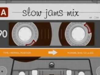 DJ Ace, LifeTime Music SlowJam Mix, mp3, download, datafilehost, fakaza, Afro House 2018, Afro House Mix, Afro House Music, House Music