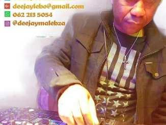 Dj Malebza, Random Ratchet Reloaded Mix, Festive, 2018, mp3, download, datafilehost, fakaza, DJ Mix, House Mix