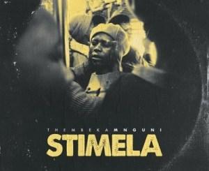 Thembeka Mnguni %E2%80%93 Stimela zamusic - Thembeka Mnguni – Stimela