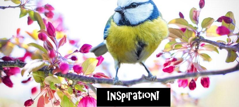 Acrylic Spring Songbird