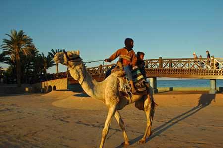 Egyptphoto1-2