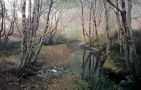 Alder Creek, 2000;  by Stephen McMillan