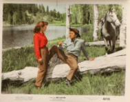 http://www.emovieposter.com/images/moviestars/AA140302/550/color_8x10_red_canyon_set_of_10_a_JC10673_L.jpg