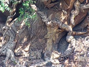 tree of life close up