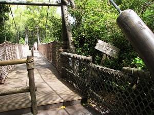 Tom Sawyer bridge