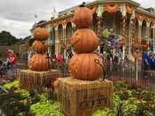 Pumpkin photo opp on Main Street, U.S.A.