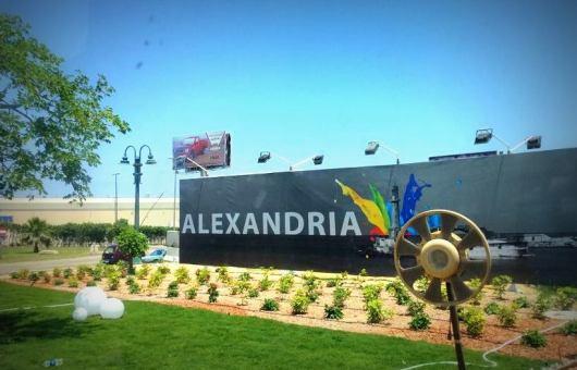 Bate e Volta para Alexandria Zanzemos