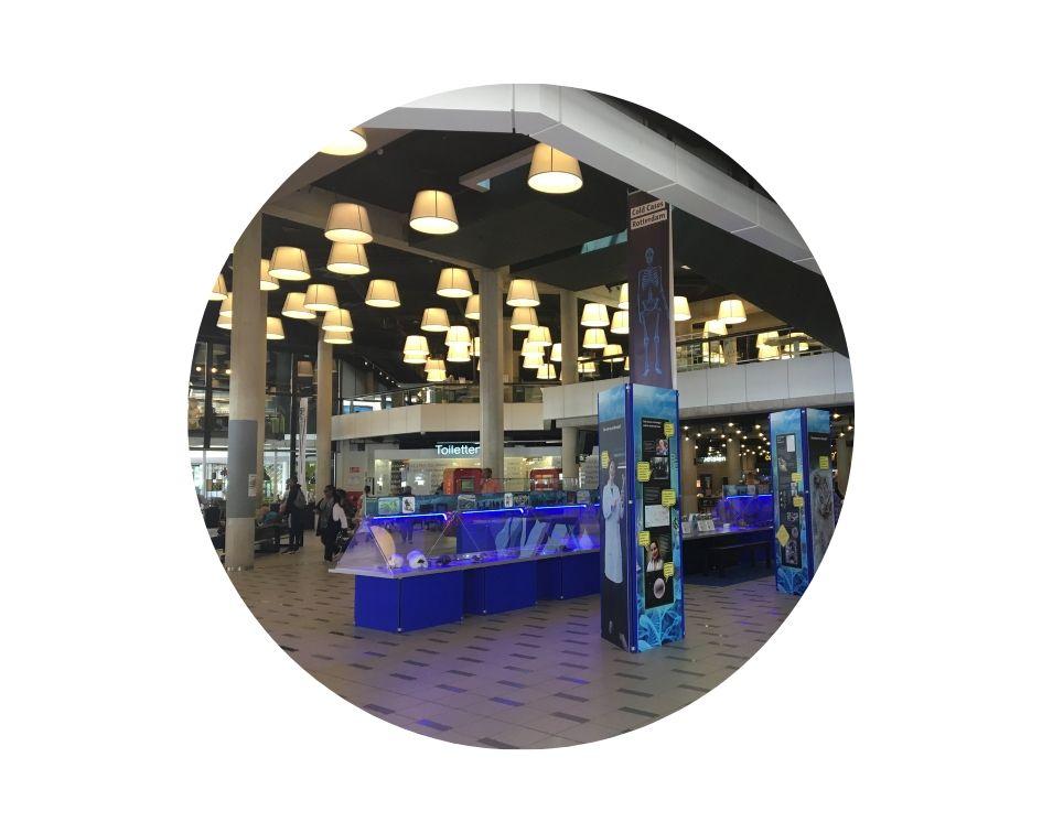 Biblioteca na Holanda em Roterdã