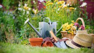 Советы садовника