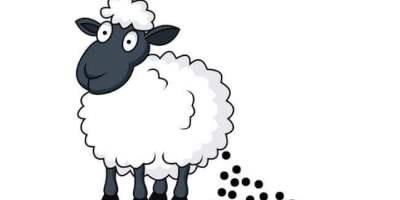Вид запора овечий кал