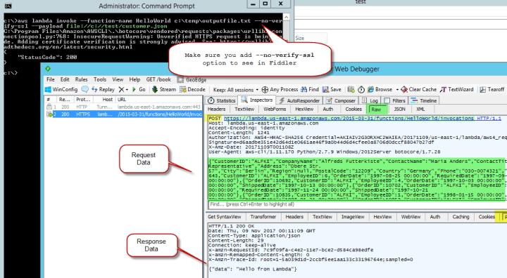 Capture AWS Commandline (CLI) request using Fiddler