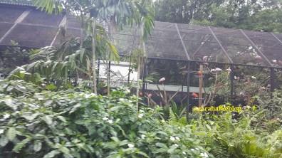 Blog 183 - Singapore - 20