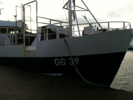 GG 39 Rossö