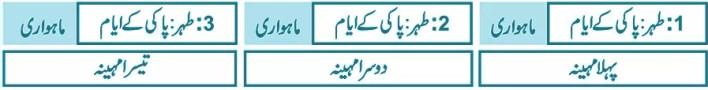 triple-talaq-in-islam-halalah-surah-baqarah-maulana-muhammad-khan-sherani-syed-atiq-ur-rehman-gailani(4)