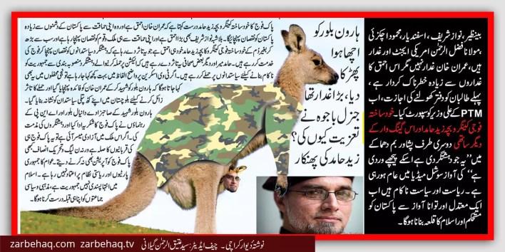 zaid-hamid-kangaroo-kids-idiot-imran-khan-nawaz-sharif-khud-sakta-fouji-kangroo-bacha-gang-war-pakistan