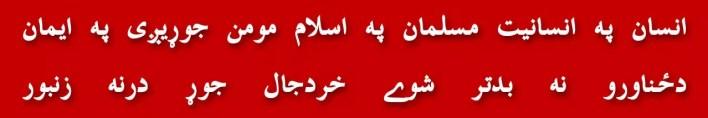 138-qurbani-frontline-kutya-nato-dog-k-electric-hakeem-ullah-mehsood-bait-ullah-mehsud-black-water-haqqani-network