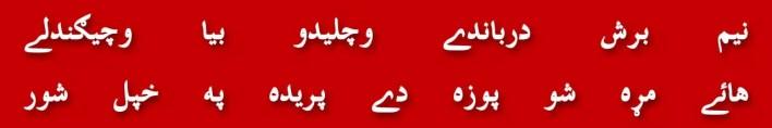 28-maulana-yousuf-ludhyanvi-amir-liaquat-fake-phd-certificate-gadha-imran-khan-shaukat-khanum-hospital
