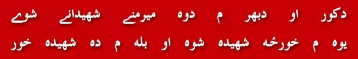 45-imran-khan-lotaism-pak-fouj-pervez-musharraf-referendum-imran-molvi-nawaz-shareef-molvi-shahbaz-shareef-molvi-talban-mma-ptm-namaz-e-janaza