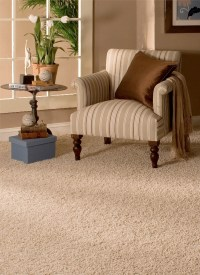 Home Selling Tips: Carpet Replacement Gets You More Money ...