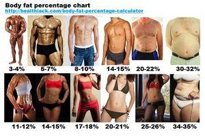Norma masei musculare a omului. Procentaj perfect grăsime