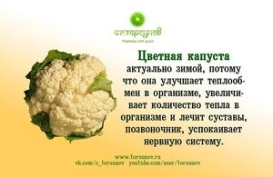 Кому нельзя есть цветную капусту