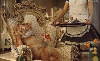 O luksusie