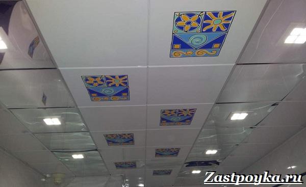 Кассетный-потолок-Описание-особенности-применение-и-виды-кассетного-потолка-3