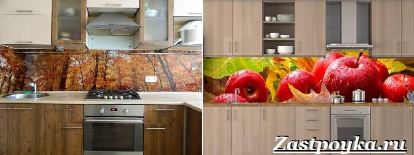 Кухонный-фартук-Описание-особенности-виды-и-цена-кухонных-фартуков-15