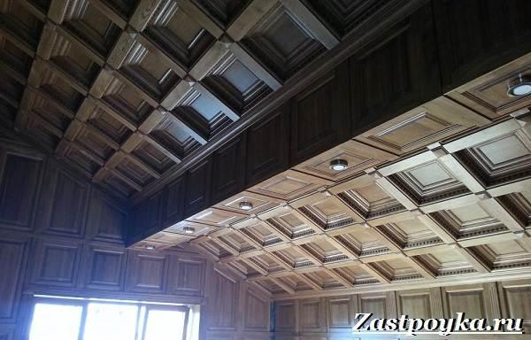Кессонный-потолок-Описание-особенности-виды-и-монтаж-кессонного-потолка-2