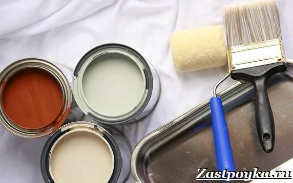 Водоэмульсионная-краска-Описание-особенности-применение-и-цена-водоэмульсионной-краски-2