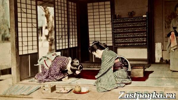 Японские-шторы-Описание-особенности-цена-и-отзывы-о-японских-шторах-2
