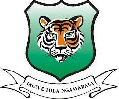 Ingwe TVET College Application Form