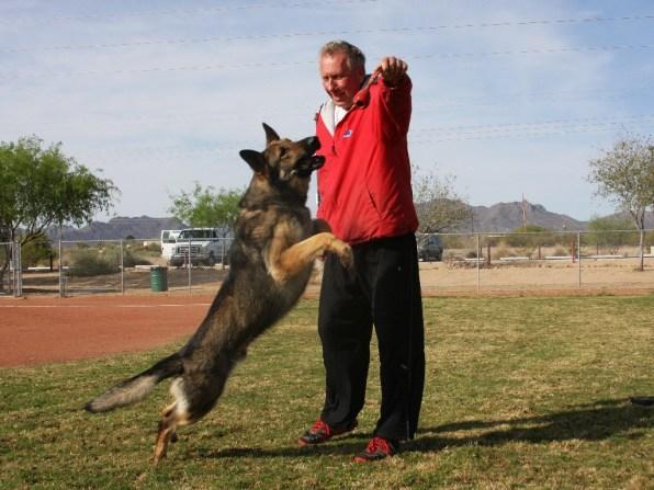 Dog Trainer in Tucson Arizona