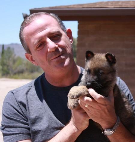 German Shepherd Puppy new home in Virgin Islands