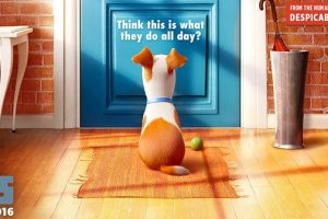 The Secret Life Of Pets Fan Challenge | Re-Create the Poster! 5