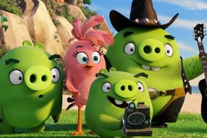 Blake Shelton to sing and voice a pig in THE ANGRY BIRDS MOVIE! 2