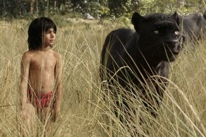 THE JUNGLE BOOK - Tickets Now On Sale!