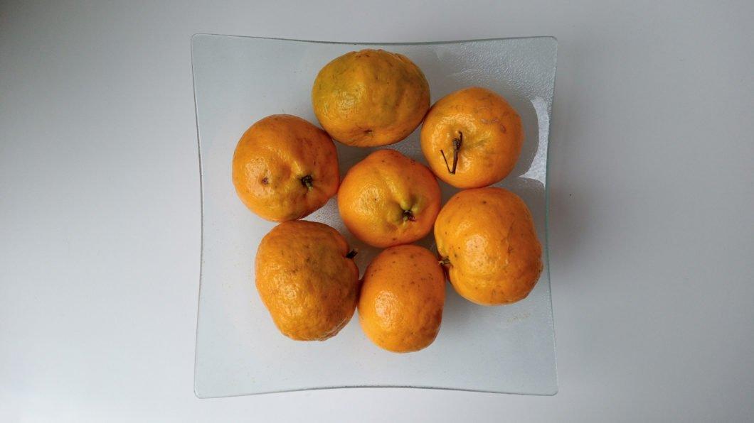 Frutas - foto tirada com o Moto G8 Power Lite