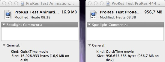 ProRes vs Animation