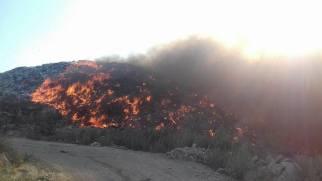 incendiu groapa de gunoi Bacau 4