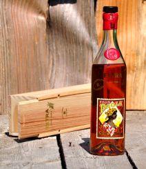 rum_paola