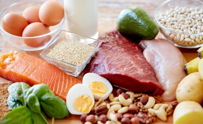 proteini za brzi metabolizam
