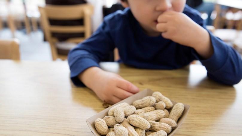 alergija na kikiriki kod djece