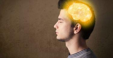 mozak nakon smrti