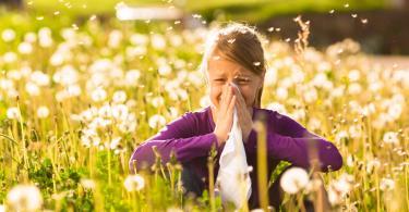 alergija na polen, tipovi simptomi i tretman
