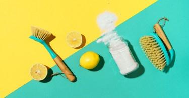 Da li su prirodna sredstva za dezinfekciju dovoljno efikasna