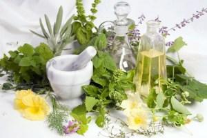 Herbal-Delights-herbs