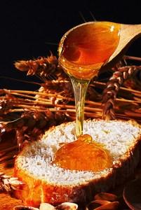 Honey-On-Bread