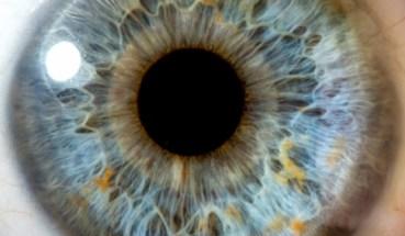 oko-otblizo